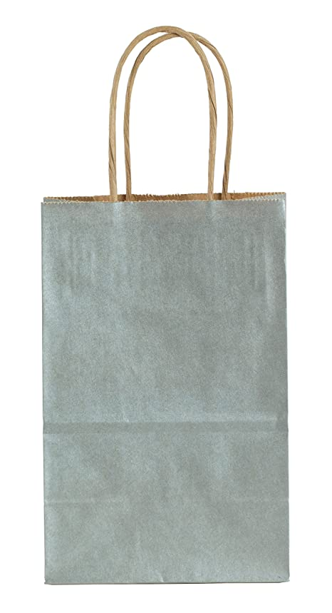 Premier Packaging AMZ-230043 15 Count Metallic Shopping Bag, 5.25 by 8.25-Inch, Silver
