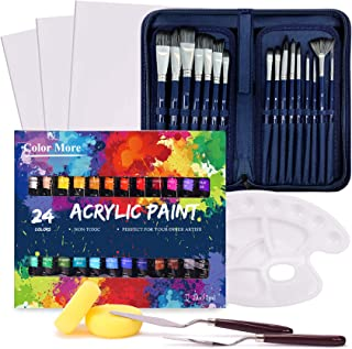 Acrylic Paint Set, 49 Piece Professional Painting Supplies Set, Includes 24 Acrylic Paints, 16 Painting Brushes with Case,...