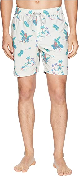Central Volley Boardshorts