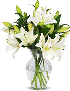 Benchmark Bouquets 8 Stem White Lily Bunch, With Vase (Fresh Cut Flowers)