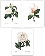 Botanical Prints, 8×10 (White Home Decor Room, Redoute Flower Wall Art, Set of 3) Unframed
