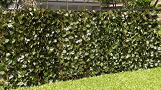 Best expandable faux ivy trellis uk Reviews