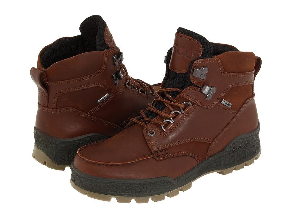 ECCO Track II GTX High (Bison Leather/Bison Oiled Nubuck) Men