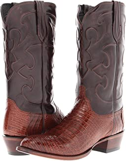 Sienna Belly Crocodile/Dark Brown Derby Calf