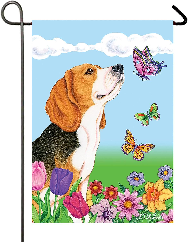 Beagle - Finally resale start Best of 5 ☆ very popular Flag Butterfly Garden Breed
