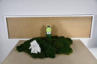 DIY Moosbild 100% mousses Plates, Moos, Moos, Scrapbooking, Coller soi-même, Do it Yourself Set de mousses de décoration M...