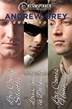 Senses Vol.1 (Dreamspinner Press Bundles)