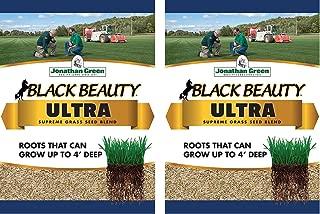 Jonathan Green Black Beauty Ultra Grass Seed, 1-Pound (1-Pound 2-Pack)