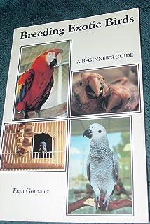 Breeding Exotic Birds: A Beginner's Guide