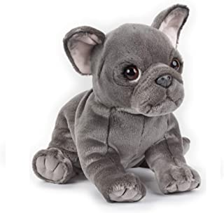 Lelly - National Geographic Blue French Bulldog, Sitting