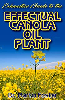 Exhaustive Guide To The Effectual Canola oil Plant