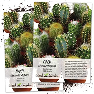 Seed Needs, Cacti/Cactus (Specialty Blend) Twin Pack of 130 Seeds Each