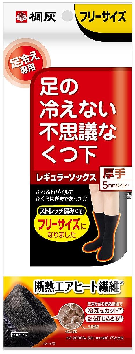 生じる疑問を超えてあえて桐灰化学 足の冷えない不思議なくつ下 レギュラーソックス 厚手 足冷え専用 フリーサイズ 黒色 1足分