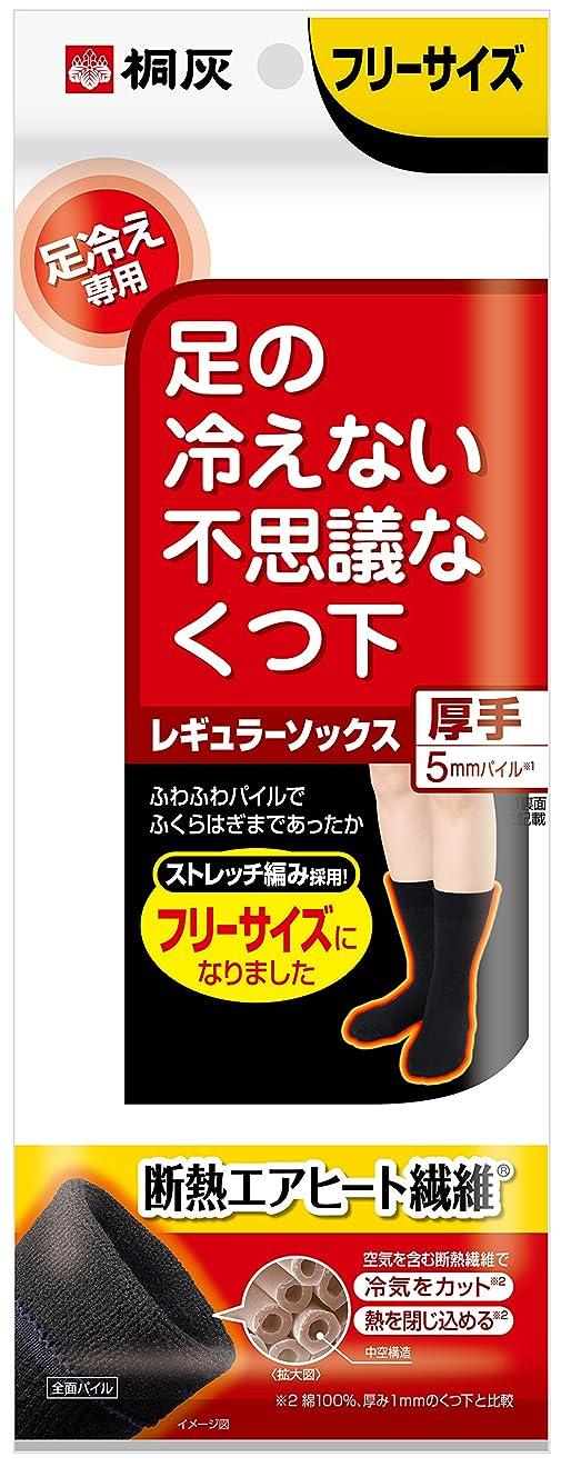説教韻思い出桐灰化学 足の冷えない不思議なくつ下 レギュラーソックス 厚手 足冷え専用 フリーサイズ 黒色 1足分