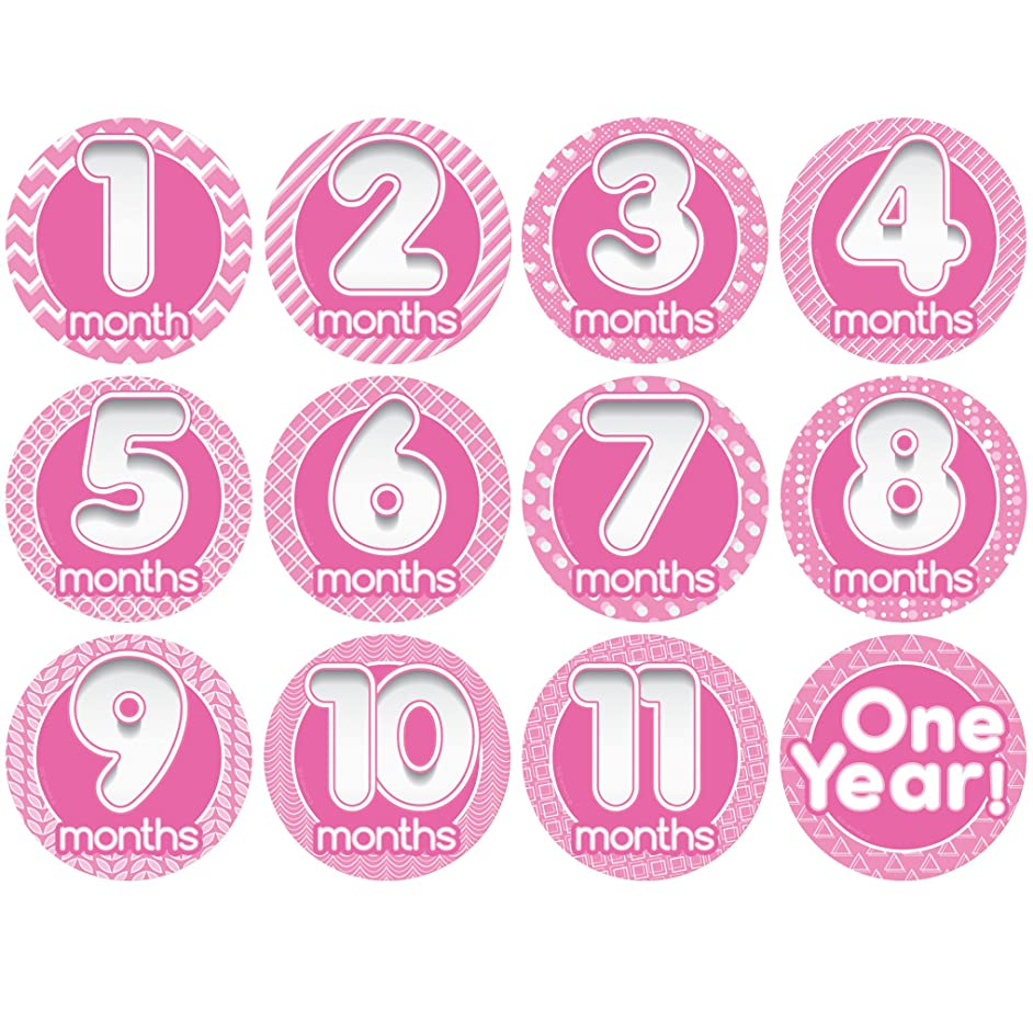 Stick'Nsnap Original (TM) Happy Bubbles Pink 12 milestones Stickers. 3.25''