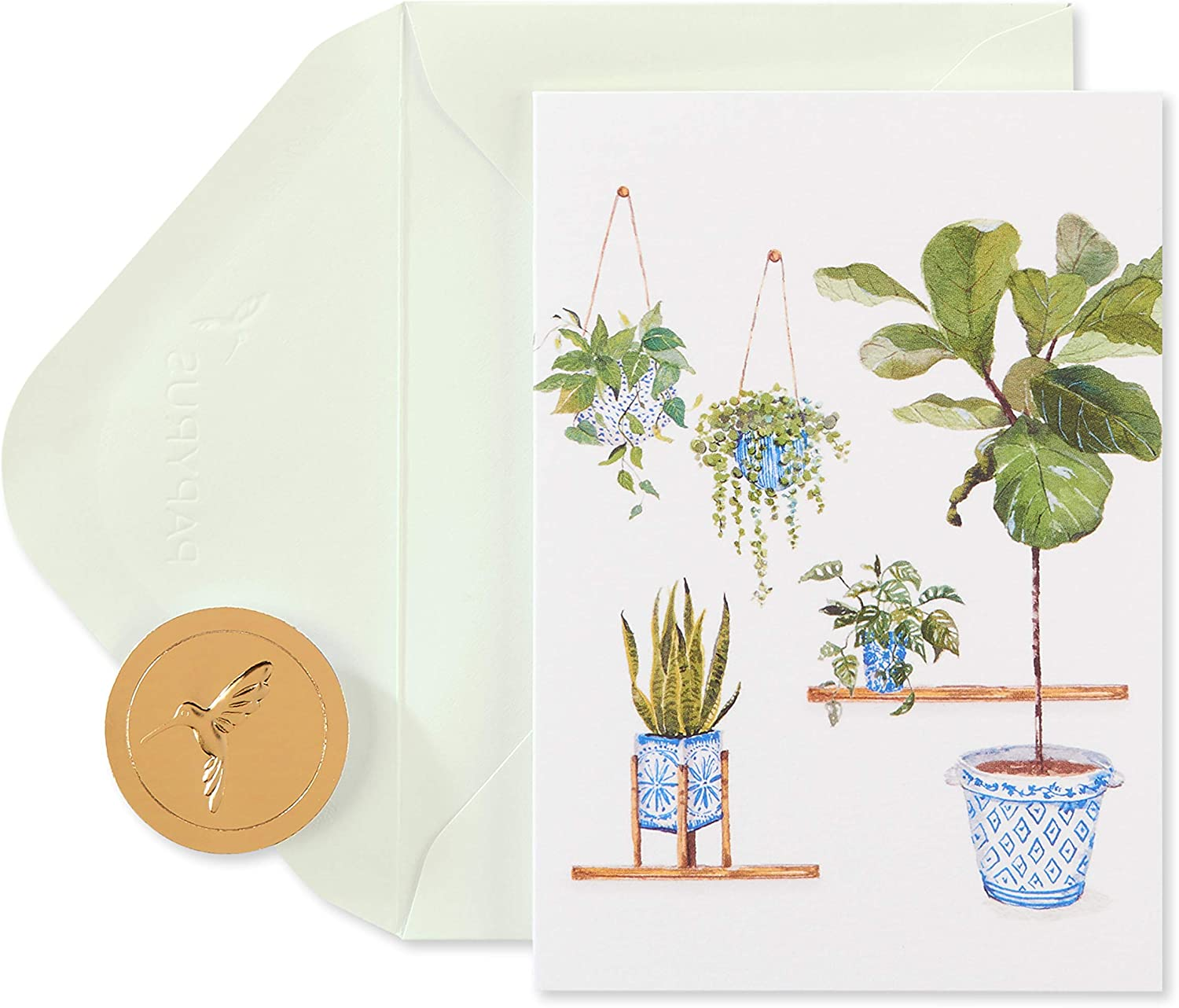 Papyrus Blank Cards with Envelopes, Indoor Garden (14-Count)