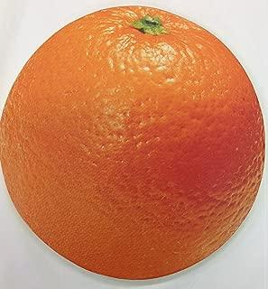 Foam Kneeling Pads Kneeling Mats Garden Mechanic Knee Pads Workshop Kneeler Kneeling Mats (Orange)