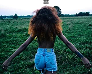 The Pursuit of Happiness [Explicit]