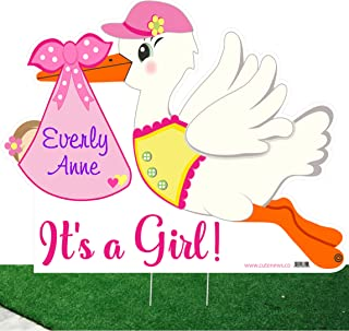 It's a Girl Custom Yard Stork Sign and Shh Baby Sleeping Door Hanger Kit - Personalized Birth Lawn Announcement - Outdoor Shower Party Decoration - Welcome Home Newborn Arrival