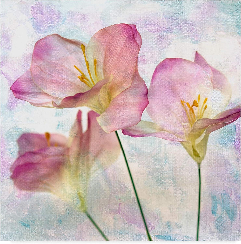 Trademark Fine Art Pink Hyacinth III by Honey Malek, 14x14