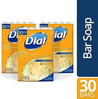 30-Count Dial Antibacterial Bar Soap