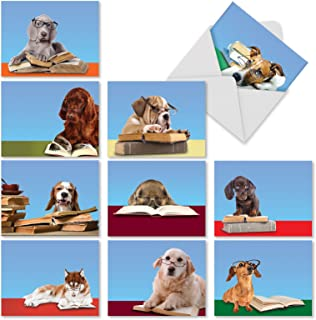 Best labrador retriever rescue christmas cards Reviews