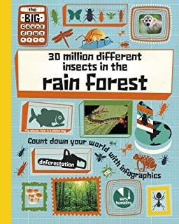 30 Million Different Insects in the Rainforest (Raintree Perspectives: The Big CountDown)