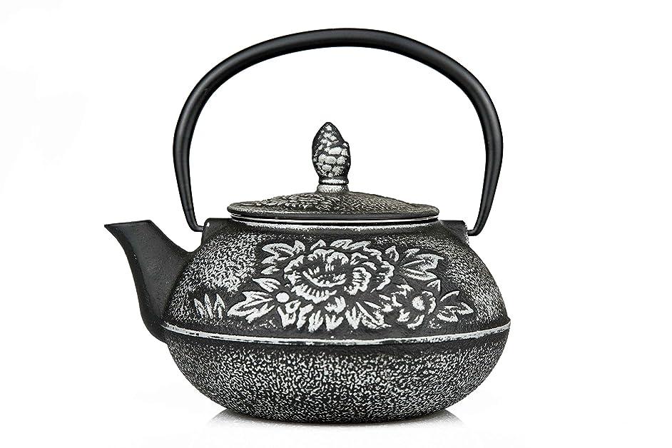 27 Oz Cast Iron Teapot Japanese Tetsubin Teakettle with Stainless Steel Infuser - Enamel Coated Interior