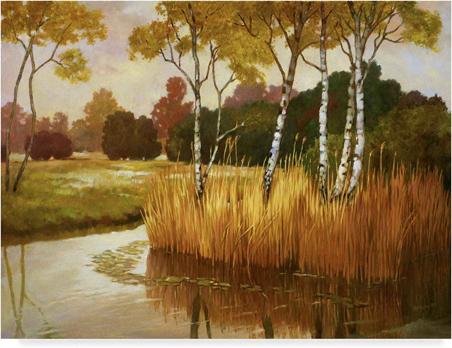 Trademark Fine Art Reeds Birches and Water Ii Wall Decor by Graham Reynolds, 14x19