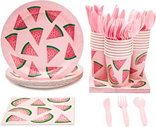 watermelon themed party supplies