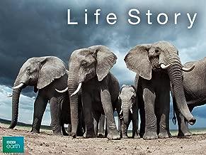 life documentary animals