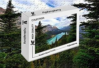 PigBangbang,Stained Art Kids Adult Literate Jigsaw Glue Wooden - Canada Alberta Banff National Park Mount Patterson Peyto Lake Trees Clouds - 300 Piece Jigsaw Puzzle (20.6 X 15.1'')