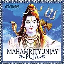 Mahamrityunjay Havan (with Mahamrityunjay Mantra Recitation), Pt. 2