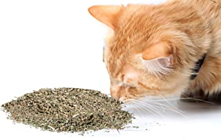 Cat Crack Catnip, Premium Blend Safe for Cats, Infused with Maximum Potency Your Kitty is Sure to Go Crazy for