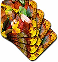 3dRose Fall Leaves Coaster, Soft, Set of 4