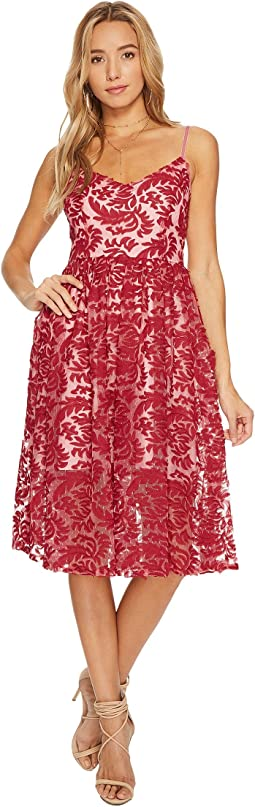 BB Dakota - Candler Two-Tone Lace Midi Dress