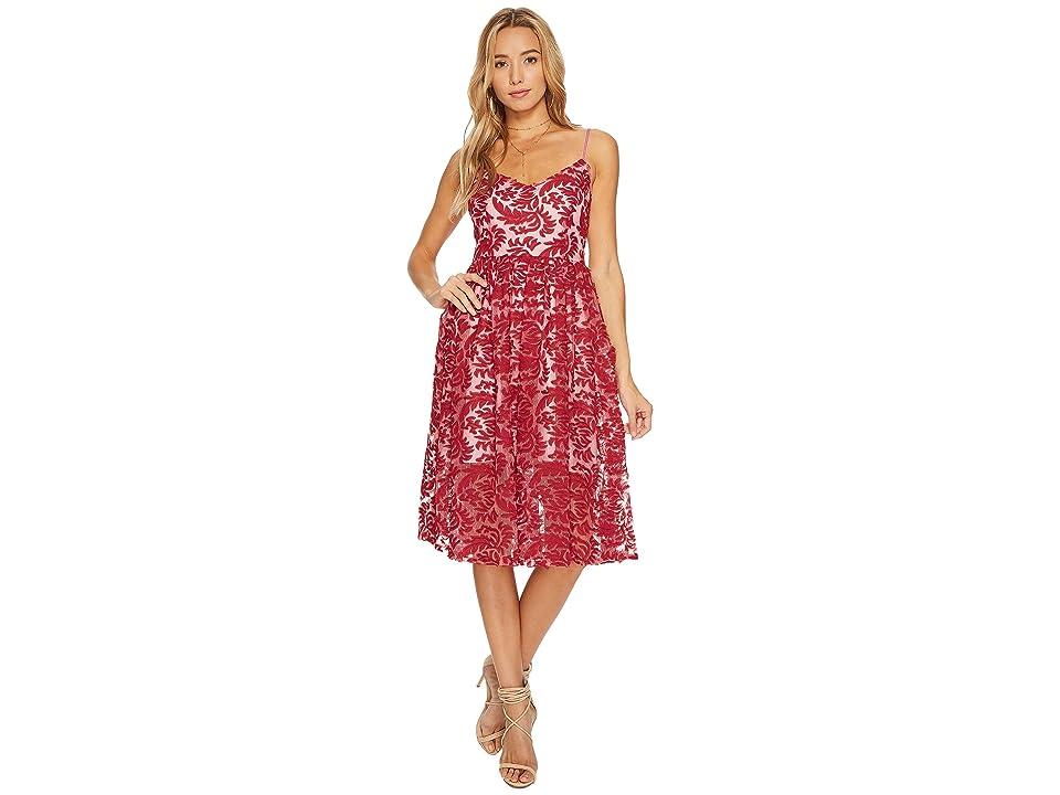 BB Dakota Candler Two-Tone Lace Midi Dress (Cranberry) Women