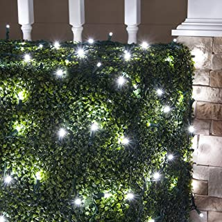 Wintergreen Lighting LED Net Lights Outdoor LED Holiday Lights Net, Outdoor Decorative Lights Christmas Net Lights, Hedge Christmas Lights, Set of 100 (4 x 6 ft, 5mm Lights, Pure White Twinkle)