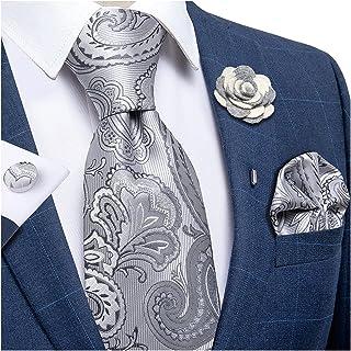 DiBanGu Silk Tie Woven Handkerchief Men's Necktie and Lapel Pin Brooch Set Paisley Plaid Solid Floral