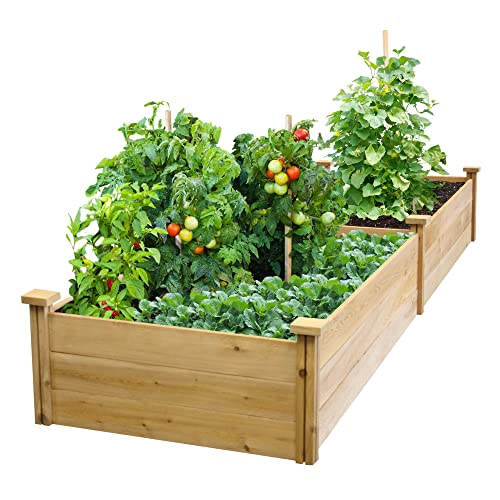 Strange Raised Garden Beds Amazon Com Pabps2019 Chair Design Images Pabps2019Com