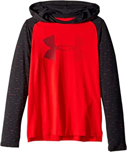 Under Armour Kids - Cotton Knit Hoodie (Big Kids)