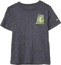 Short Sleeve Graphic T-Shirt (Little Kids)