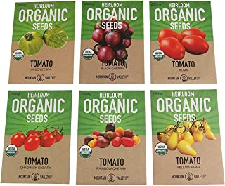 Organic Heirloom Cherry Tomato Garden Seeds – 6 Non-GMO Varieties: Yellow Pear, Chadwick Cherry, Black Cherry, Rainbow Cherry, Roma & Green Zebra