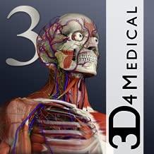 Best 3d human anatomy software Reviews
