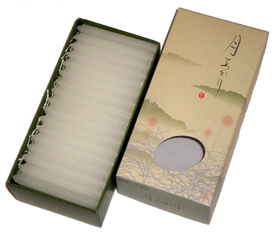 専門用語岸社員東海製蝋のろうそく 月あかり 30分約96本