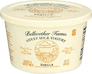 Bellwether Farms Vanilla Sheep Milk Yogurt, 16 Oz