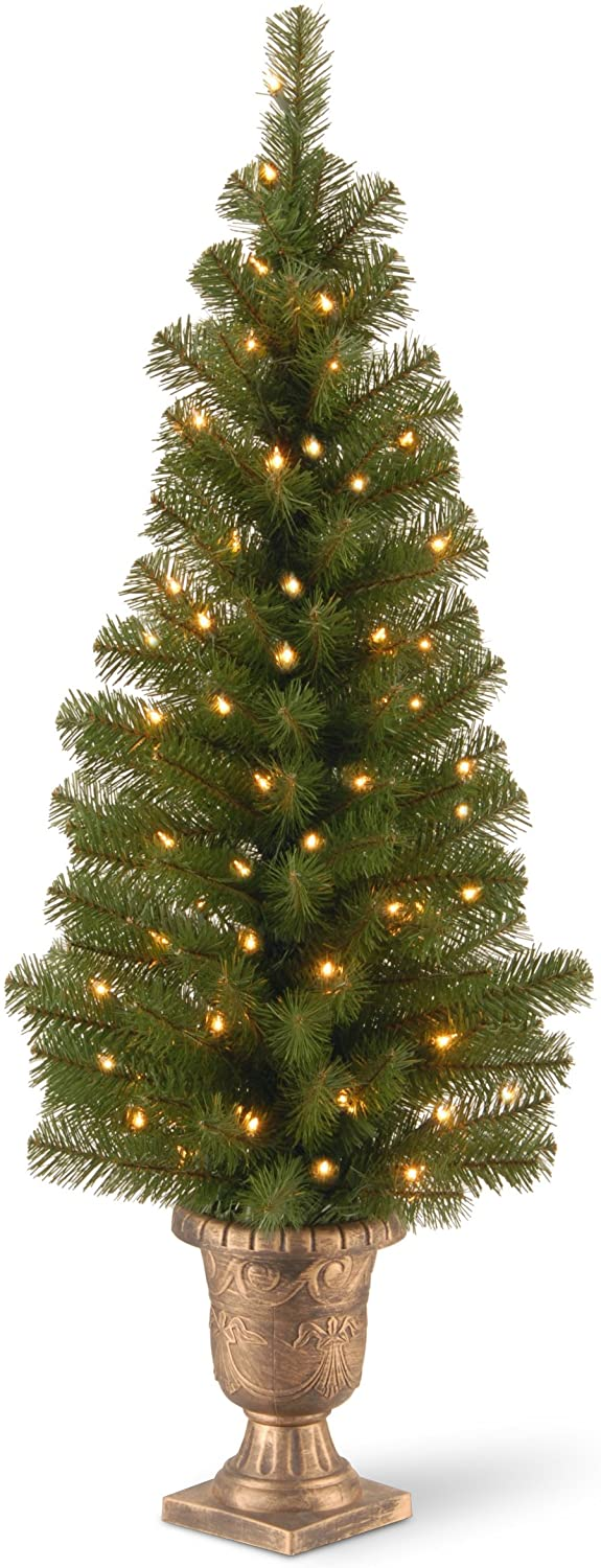 National Tree Company free shipping Pre-lit and For Entrances Artificial discount