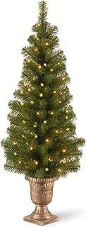 Best outdoor christmas tree for front door Reviews