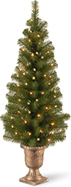National Tree Company Pre-lit Artificial Tree For Entrances and Christmas| Includes Pre-strung White Lights | Montclair Spruc