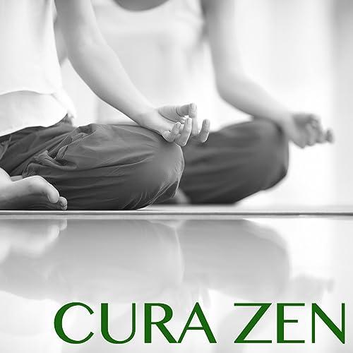Cura Zen - 30 Canzoni per Imparare a Meditare Mindfulness ...